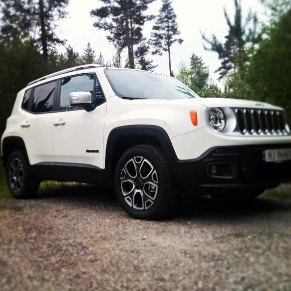 Showcase cover image for Alpie